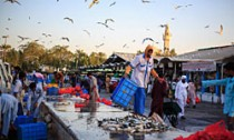 Saudi Fish Market