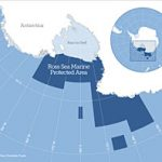World's largest reserve in Antarctic sea