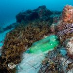 Plastic on a coral reef
