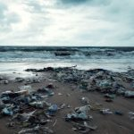 Ocean Pollution: Simple, Everyday Ways You Can Help Make a Difference