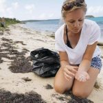 Plastic garbage patch: Medical tests 'inspired me to investigate'