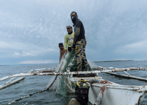 Fisherman in Bohol