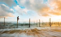 Man fishing in Sri Lanka at sunset