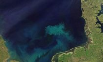 As well as changes in the blue of the oceans, we are also likely to see changes in the green
