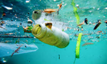Plastic polluting the Oceans