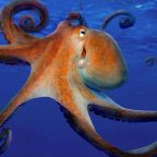 Octopus farming is 'unethical and a threat to the food chain'