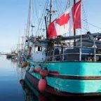 Canada's fisheries are in trouble