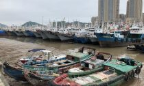 Chinese fishing boats in dock