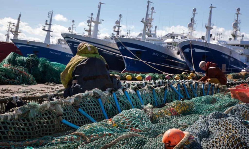 Scottish pelagic ships at Fraserburgh harbour