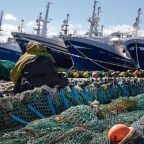 Scottish pelagic ships at Fraserburgh harbour