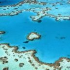 Great Barrier Reef has deteriorated to 'critical' level due to climate change
