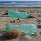Plastic bottles and bottle caps are among the most frequent items found along Mediterranean shores
