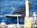 OceanTrawl_050506