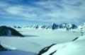 arctic_17022005
