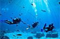 divers_140112