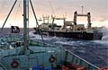 jap_vessels_090207