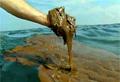 oil_200810