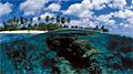 reef_290809