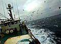 trawler_211204