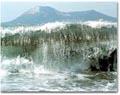 tsunami_10022005