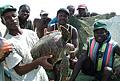 turtle-africa_071112
